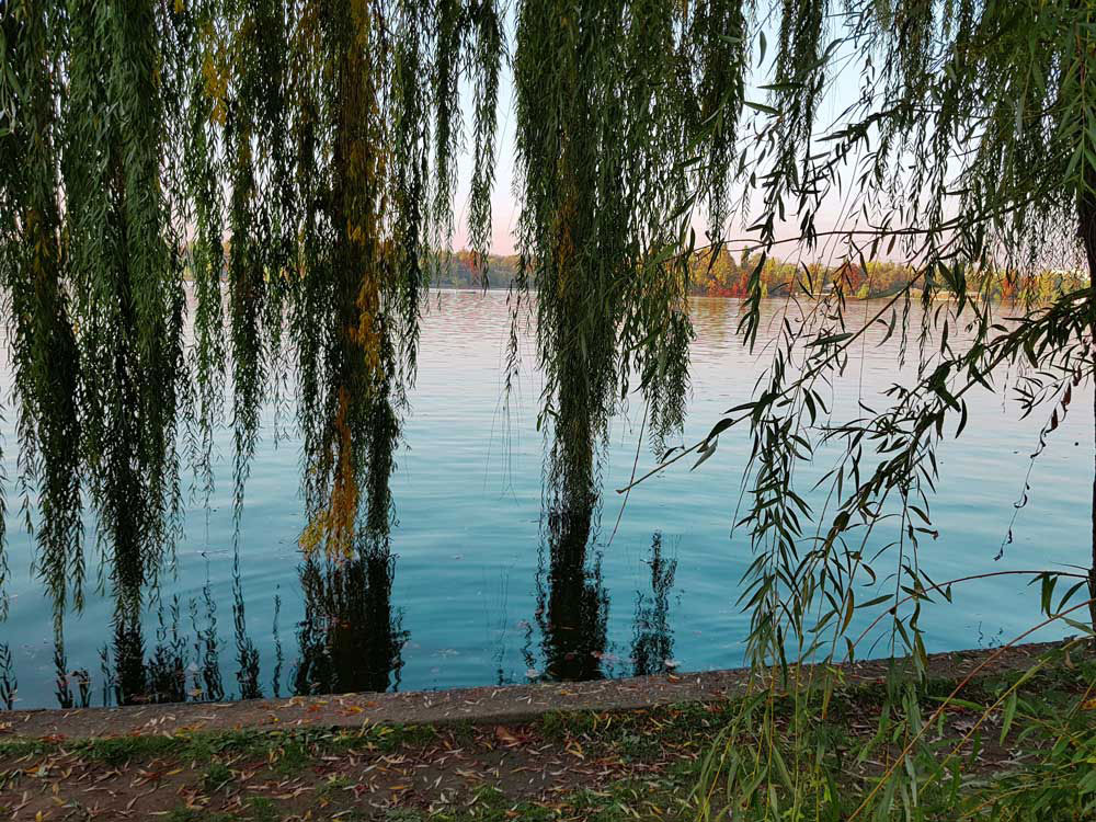 Parco Herastrau bucarest lago